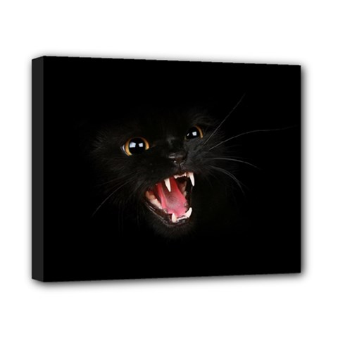 Cat Animal Cute Canvas 10  X 8