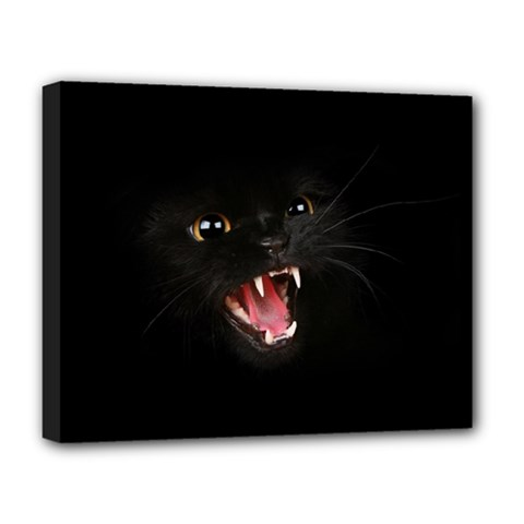 Cat Animal Cute Deluxe Canvas 20  x 16