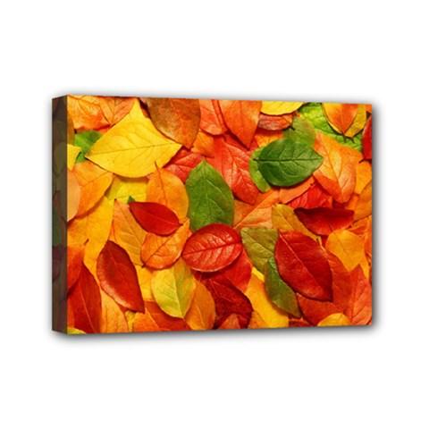 Colorful Fall Leaves Mini Canvas 7  x 5