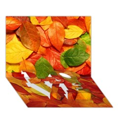 Colorful Fall Leaves Love Bottom 3d Greeting Card (7x5)