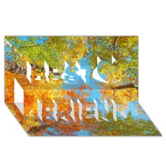 Colorful Leaves Sky Best Friends 3D Greeting Card (8x4)