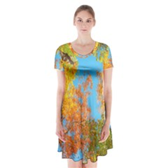 Colorful Leaves Sky Short Sleeve V-neck Flare Dress