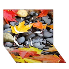 Colorful Leaves Stones Clover 3D Greeting Card (7x5)
