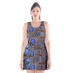 Feathers Peacock Light Scoop Neck Skater Dress