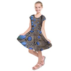 Feathers Peacock Light Kids  Short Sleeve Dress