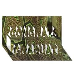 Fractal Complexity 3d Dimensional Congrats Graduate 3D Greeting Card (8x4)