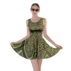 Fractal Complexity 3d Dimensional Skater Dress