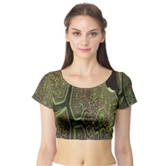 Fractal Complexity 3d Dimensional Short Sleeve Crop Top (Tight Fit)