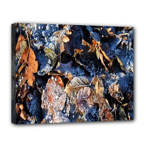 Frost Leaves Winter Park Morning Canvas 14  x 11