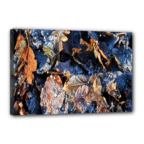 Frost Leaves Winter Park Morning Canvas 18  x 12