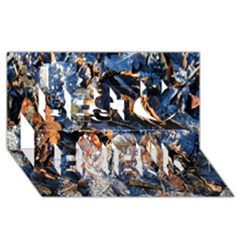 Frost Leaves Winter Park Morning Best Friends 3D Greeting Card (8x4)