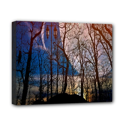 Full Moon Forest Night Darkness Canvas 10  x 8