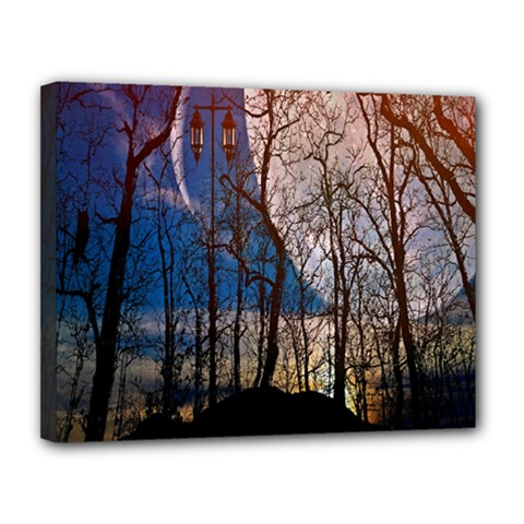 Full Moon Forest Night Darkness Canvas 14  x 11