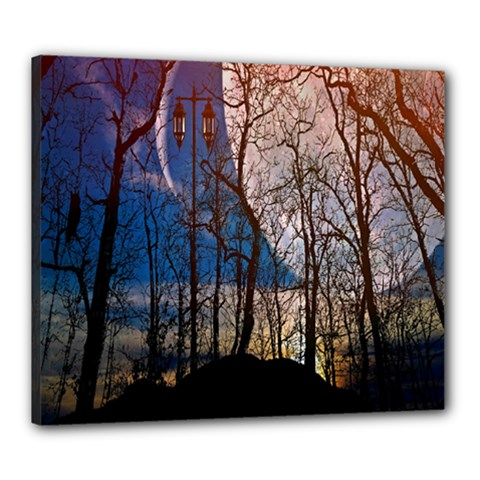 Full Moon Forest Night Darkness Canvas 24  x 20