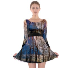 Full Moon Forest Night Darkness Long Sleeve Skater Dress