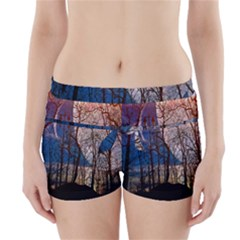 Full Moon Forest Night Darkness Boyleg Bikini Wrap Bottoms