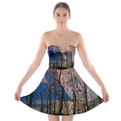 Full Moon Forest Night Darkness Strapless Bra Top Dress