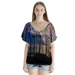 Full Moon Forest Night Darkness Flutter Sleeve Top