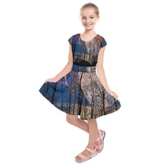 Full Moon Forest Night Darkness Kids  Short Sleeve Dress
