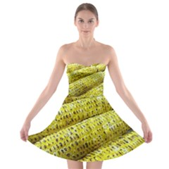 Corn Grilled Corn Cob Maize Cob Strapless Bra Top Dress