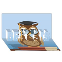 Read Owl Book Owl Glasses Read BEST SIS 3D Greeting Card (8x4)