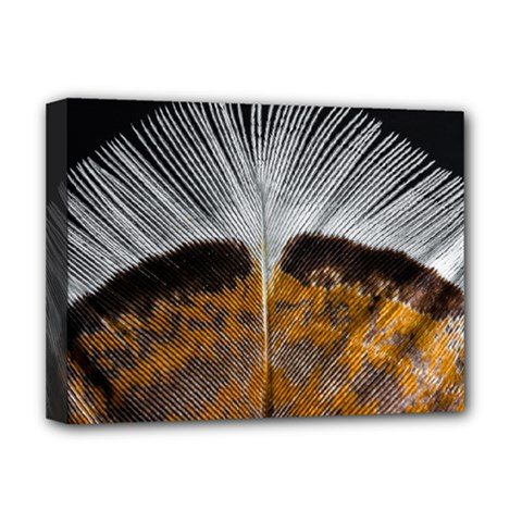Spring Bird Feather Turkey Feather Deluxe Canvas 16  x 12