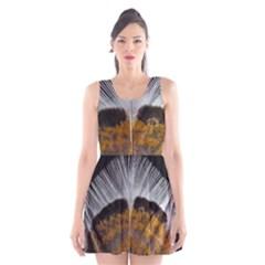 Spring Bird Feather Turkey Feather Scoop Neck Skater Dress