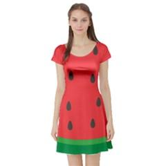 Watermelon Fruit Short Sleeve Skater Dress