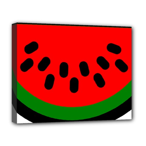Watermelon Melon Seeds Produce Deluxe Canvas 20  x 16