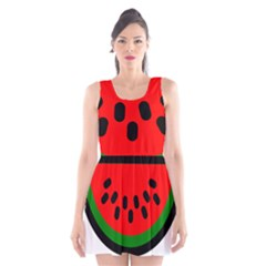 Watermelon Melon Seeds Produce Scoop Neck Skater Dress