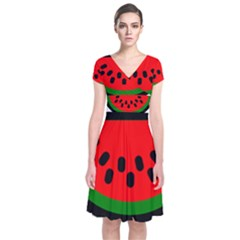 Watermelon Melon Seeds Produce Short Sleeve Front Wrap Dress
