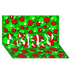 Xmas flowers SORRY 3D Greeting Card (8x4)