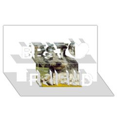 Pumi Best Friends 3D Greeting Card (8x4)