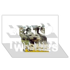 Pumi Best Wish 3D Greeting Card (8x4)