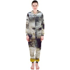 Pumi Hooded Jumpsuit (Ladies)