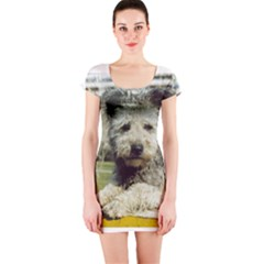 Pumi Short Sleeve Bodycon Dress