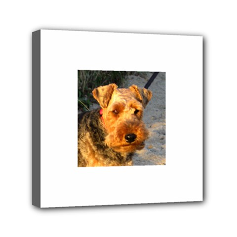 Welch Terrier Mini Canvas 6  x 6