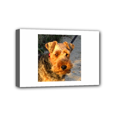 Welch Terrier Mini Canvas 6  x 4