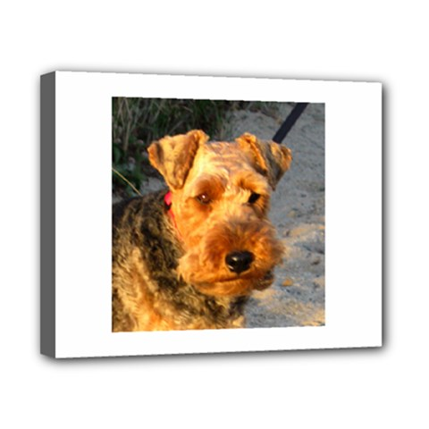 Welch Terrier Canvas 10  x 8