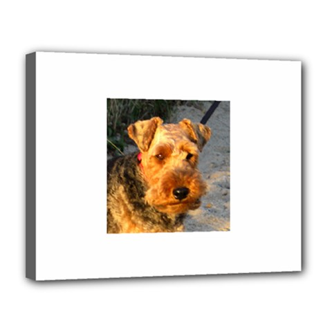 Welch Terrier Canvas 14  x 11