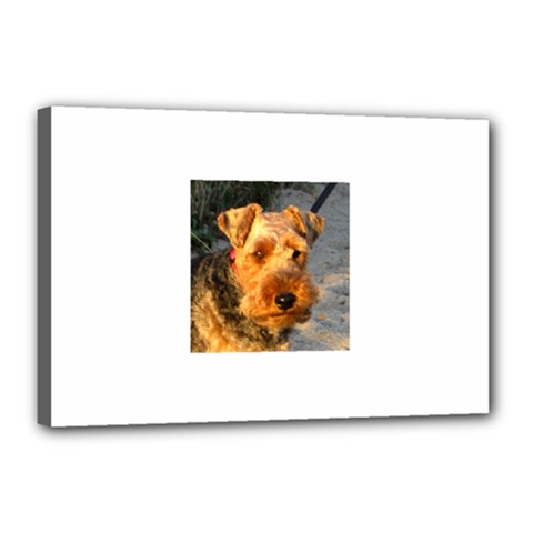Welch Terrier Canvas 18  x 12