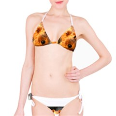 Welch Terrier Bikini Set