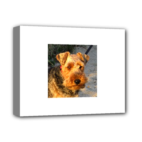 Welch Terrier Deluxe Canvas 14  x 11
