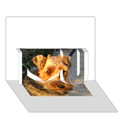 Welch Terrier I Love You 3D Greeting Card (7x5)