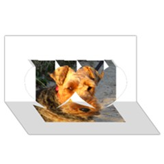 Welch Terrier Twin Hearts 3D Greeting Card (8x4)