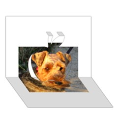 Welch Terrier Apple 3D Greeting Card (7x5)