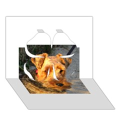 Welch Terrier Clover 3D Greeting Card (7x5)