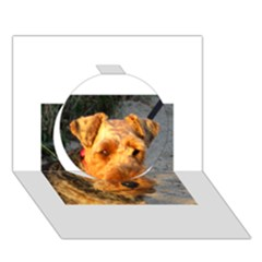 Welch Terrier Circle 3D Greeting Card (7x5)