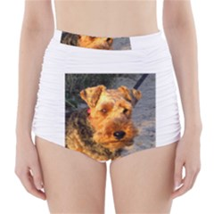 Welch Terrier High-Waisted Bikini Bottoms