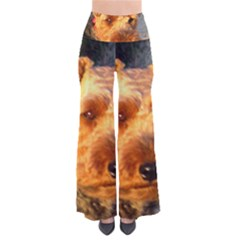 Welch Terrier Pants
